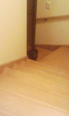 階段の下の快